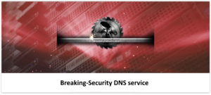 BreakingSecurity-DNS-Logo